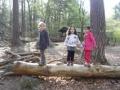 Regenbogenkindergarten